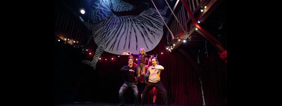 Spectacles  Cirque pour enfants et jeunes publics