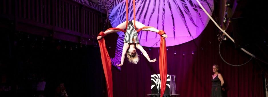 anniversaire cirque au zèbre de belleville