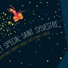 visuel saint sylvestre 2014 zebre 300X366-ok-01 (3)